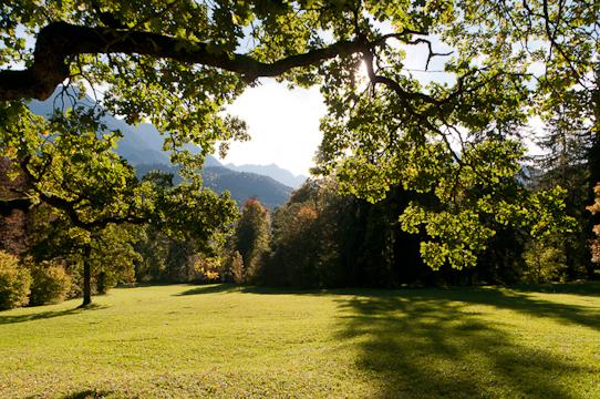 Landscape at Linderhof